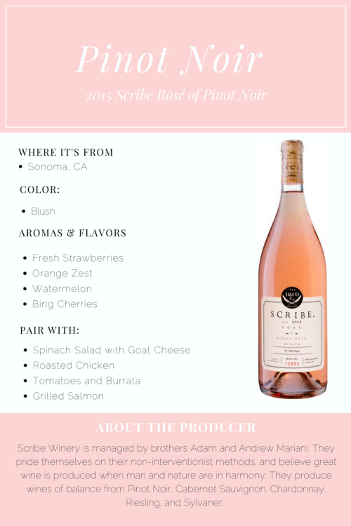 Scribe Pinot Noir Rose Post